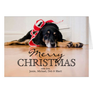 Tired Dog with Christmas ribbons Card