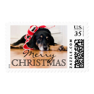 Tired Dog with Christmas ribbons Postage