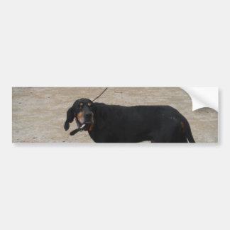Tired Hunting Dog Car Bumper Sticker
