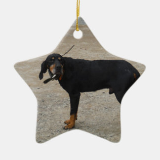 Tired Hunting Dog Double-Sided Star Ceramic Christmas Ornament