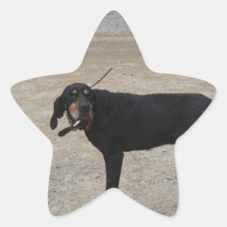 Tired Hunting Dog Star Sticker