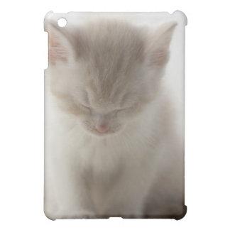 Tired Kitten Sleeping iPad Mini Covers