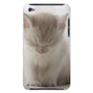 Tired Kitten Sleeping iPod Case-Mate Case