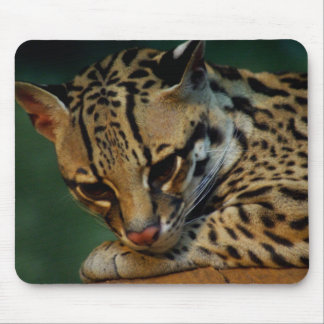 Tired kitty mousepad