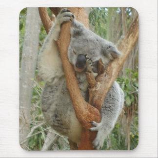 Tired Koala Mouse Pad