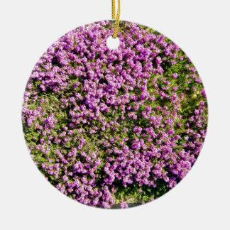 Tiro agradable de flores púrpuras en un día solead ornamentos de reyes