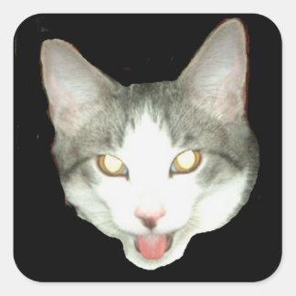 Tiro de la cabeza del gato de Punkysthe Pegatina Cuadrada