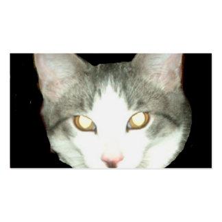 Tiro de la cabeza del gato de Punkysthe Tarjetas De Visita