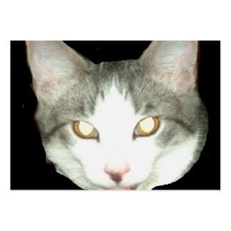 Tiro de la cabeza del gato de Punkysthe Tarjetas De Visita Grandes