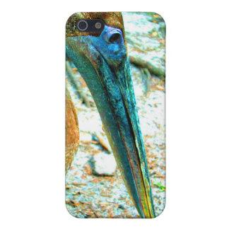 Tiro joven de la cabeza del pelícano, alto color d iPhone 5 coberturas