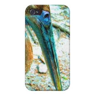 Tiro joven de la cabeza del pelícano, alto color d iPhone 4 fundas