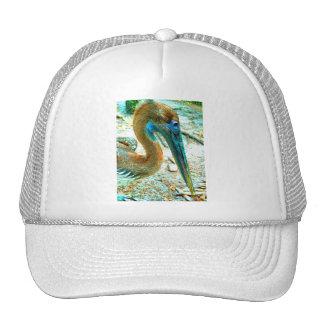 Tiro joven de la cabeza del pelícano, alto color d gorra