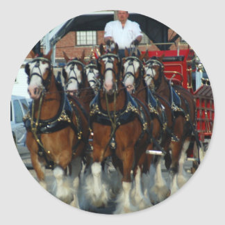 Tirón de caballo de Clydesdale 6 Pegatina Redonda
