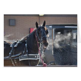 Tirón de caballo del invierno tarjeta de felicitación