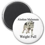 Tirón del peso del Malamute de Alaska Iman Para Frigorífico