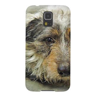 Tirón en el perro de la mezcla de Terrier del Funda De Galaxy S5