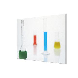 Tiros 2 del laboratorio lienzo envuelto para galerías
