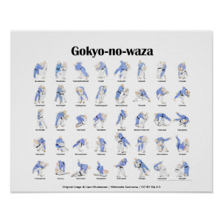 Tiros de judo posters