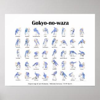 Tiros de judo póster