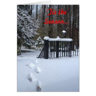 'Tis the Season Footprints in Snow Christmas Card
