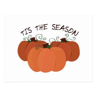 Tis The Season Postcards