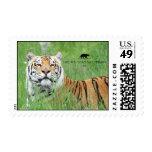 Titan - Tiger Postage Stamps