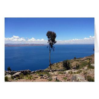 titicaca lone tree card