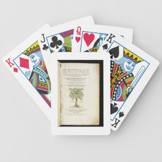 Title page from 'De Historia Stirpium Commentarii Bicycle Playing Cards