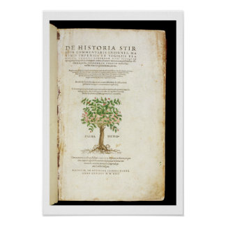 Title page from 'De Historia Stirpium Commentarii Poster