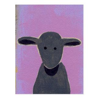 Titled:  White Sheep, Gray Sheep, Black Sheep Postcard