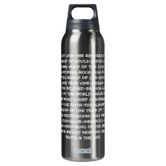 Titles of Jesus 16 Oz Insulated SIGG Thermos Water Bottle