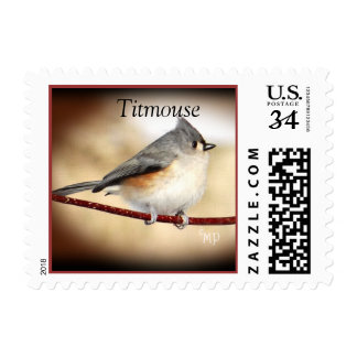 Titmouse 8903 Postage Stamp- personalize