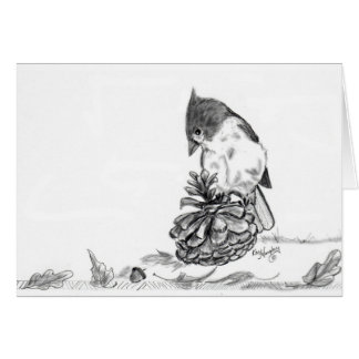 Titmouse and Pine Cone Cards