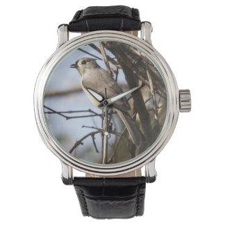 Titmouse copetudo relojes de pulsera