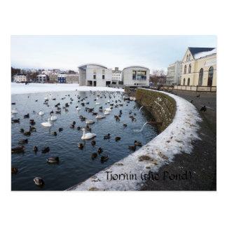 Tjornin (the Pond) ~ Reykjavik, Iceland Postcard