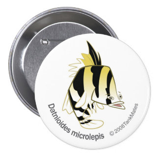 TM-12-Dathioides microlepis Pinback Button