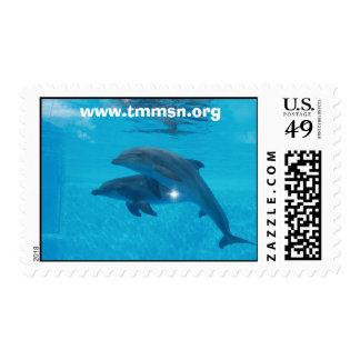 TMMSN Rescues Postage Stamp