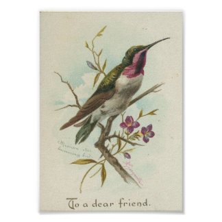To a dear friend, Vintage Hummingbird Poster