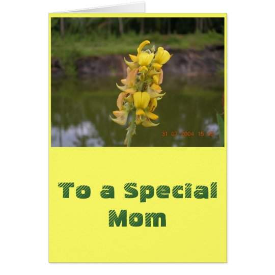 To A Special Mom Card