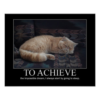 To  Achieve the Impossible Dream Cat Artwork Poster