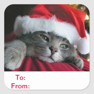 To and From Gift Tags Cat Sticker