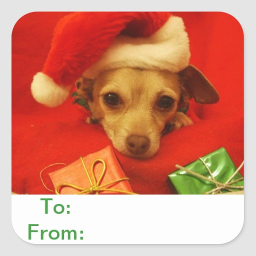 To and From Gift Tags Chihuahua Dog Sticker
