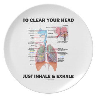 To Clear Your Head Just Inhale & Exhale (Respire) Dinner Plate