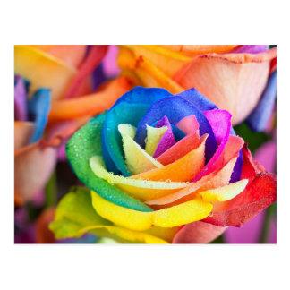 to colour flower postcard