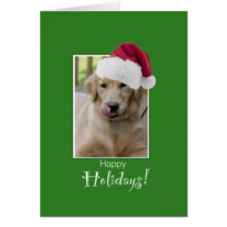 To Dog Walker at Christmas, Golden Retriever in Sa Card