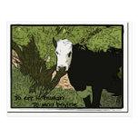 To err is human, To moo bovine Postcard