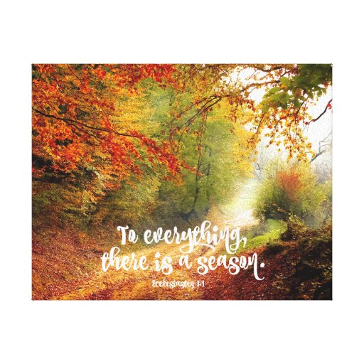 Ecclesiastes 3 AMPC - To everything there is a season, and ...