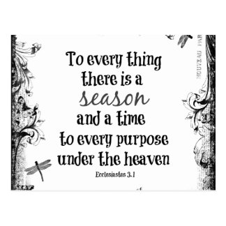 To everything there is a season Bible Verse Postcard