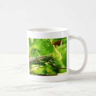 to grasshopper coffee mug