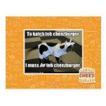 To katch teh cheezburger postcards